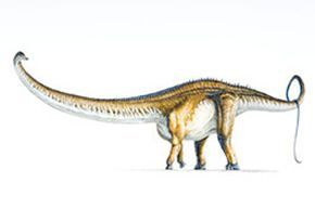 Barosaurio