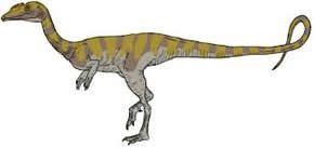 cCamposaurio